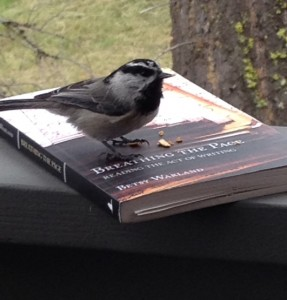 Bird on Breathing The Page