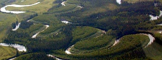 Grass River, near Fort Yukon, Alaska