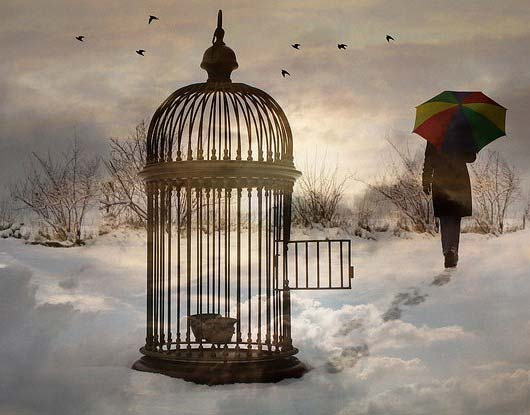 open bird cage with person walking away with umbrella